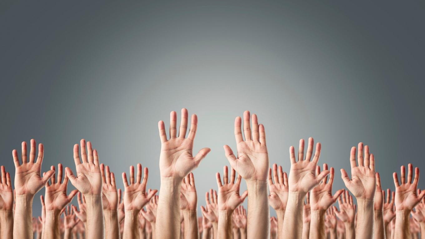 מפלגת הרשת ממציאה מחדש את הדמוקרטיה הישירה